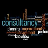 Consultant management service